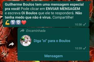 Contato do chatbot circulando em grupos de WhatsApp